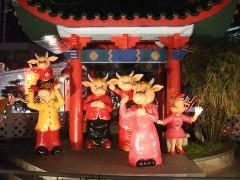 chinatown_new_year_2009_06