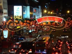 chinatown_new_year_2009_07