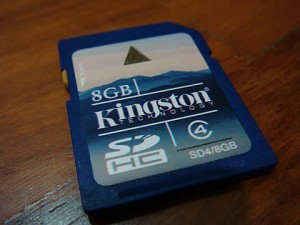 Kingston 8GB Class 4 SDHC